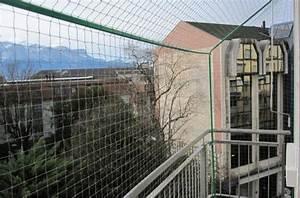 Store De Balcon Sans Fixation : kit filet de protection pour chat pour balcon avec stores ~ Edinachiropracticcenter.com Idées de Décoration