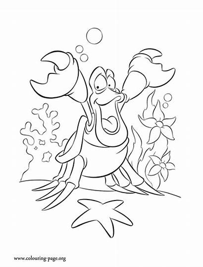 Mermaid Coloring Pages Ariel Disney Sebastian Crab