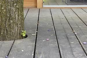 Holz Im Außenbereich : holzb den im au enbereich so gelingt die terrasse aus holz holz ist genial ~ Markanthonyermac.com Haus und Dekorationen