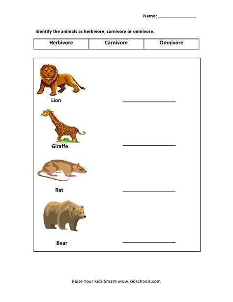 animals worksheets  kids part  worksheet mogenk