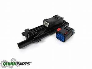 09 Factory Tailgate Backup Camera Tailgate