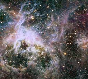 A Beautiful Web in The Tarantula Nebula: