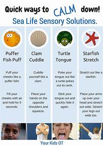 PEI ACL FAMILY NETWORK: Great tips on sensory solutions ...