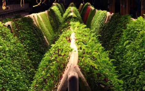 space age gardening aquaponics hydroponics