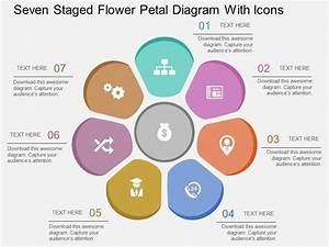 Ft Seven Staged Flower Petal Diagram With Icons Flat
