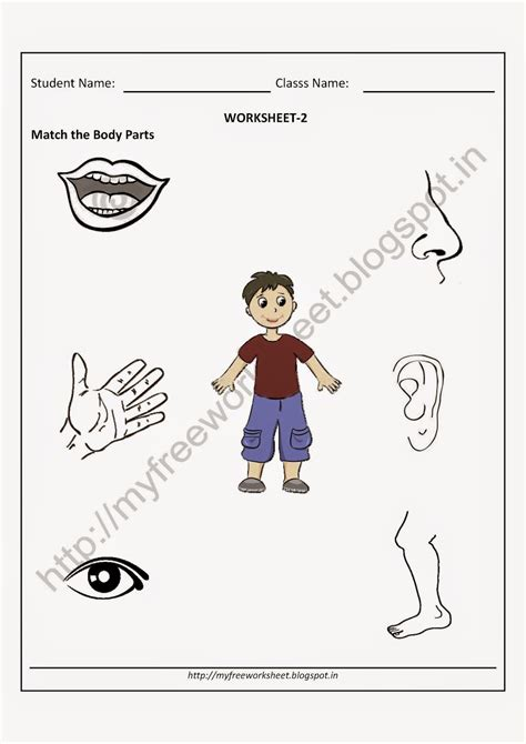 pdf free for nursery match the parts