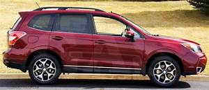 Subaru Forester Chrome Body Side Door Molding Trim Accessories