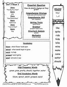 15 Best Images Of Short Stories 3rd Grade Worksheets