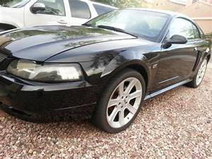Sell used Super clean 2002 Mustang GT Mach-1 in Buckeye, Arizona, United States, for US $4,800.00