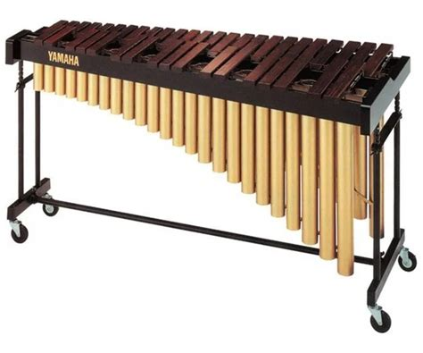 Contoh alat musik yang digesek: Lengkap 10 Contoh Alat Musik Harmonis, Beserta Gambarnya - Cinta Indonesia