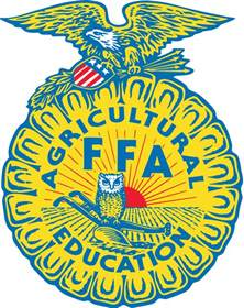 What Does Sae Stand For In Ffa by File Ffa Logo Svg Wikipedia