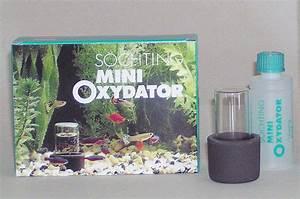 Sauerstoff Im Aquarium : s chting mini oxydator im aquarium lautlos f r sauerstoff ~ Eleganceandgraceweddings.com Haus und Dekorationen