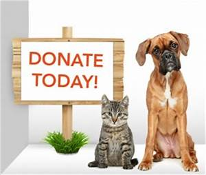 Anderson County Tennessee Humane Society | Serving all of ...