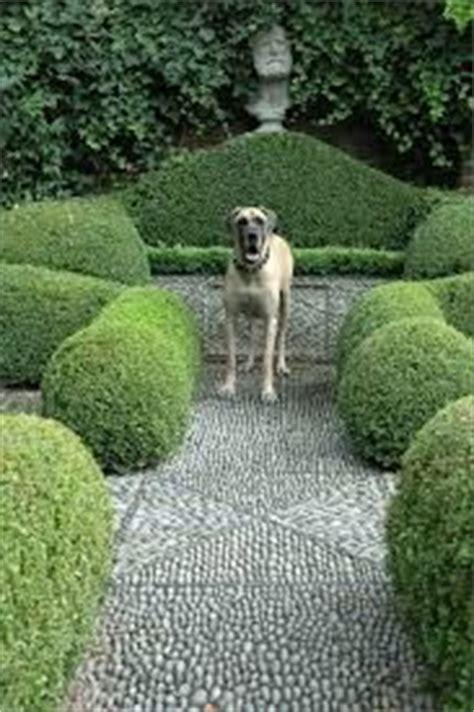 Englischer Garten In Köln by 37 Besten Kristin Lammerting D Bilder Auf