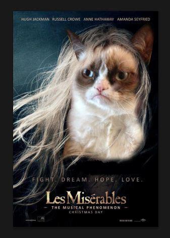 Miserable Cat Meme - pinterest the world s catalog of ideas