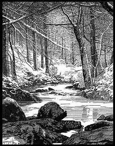 Foret De Sherwood : winter in sherwood forest by bob giadrosich 2006 ~ Voncanada.com Idées de Décoration
