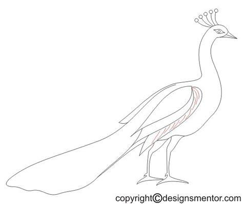 draw  peacock simple  step  step method
