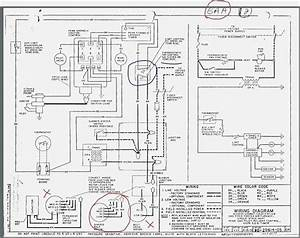 rheem furnace wiring diagram vivresavillecom With wiring rheem gas furnace wiring diagram gas furnace wiring diagram gas