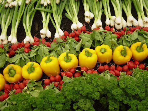 Organic farming   Jugaadibility