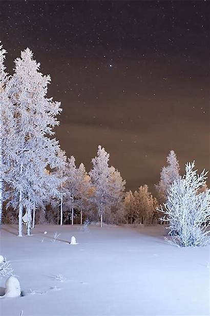 Snow Winter Forest Iphone 4s Background Parallax