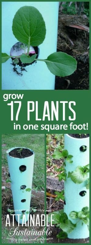 Can You Grow In A Vertical Garden by 9293 Best Gardening Outdoors Images On