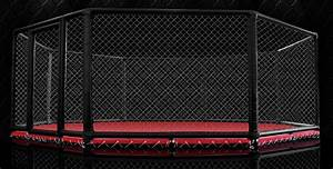 Image Gallery mma ring