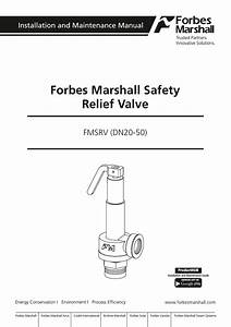 Forbes Marshall Safety Relief Valve