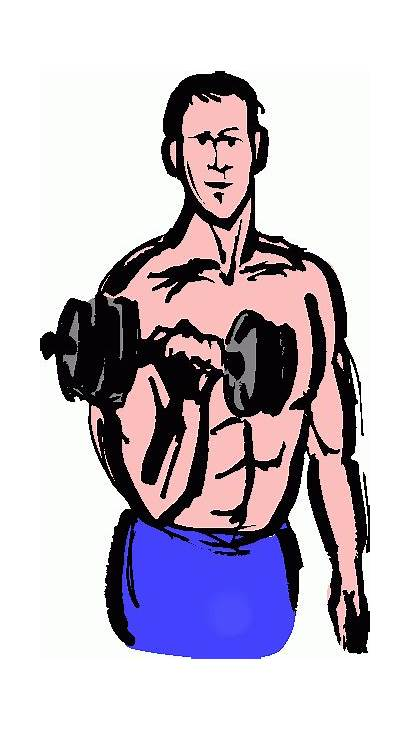 Clipart Lifting Weights Clip Weight Weightlifting Cliparts