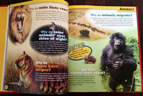"""Great Books For Kids Who Are Always Asking """"why?"""" """"where?"""" And """"how?"""""""