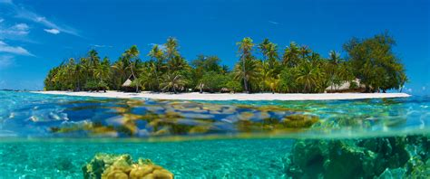 islands beaches reefs island vacations honeymoon destinations