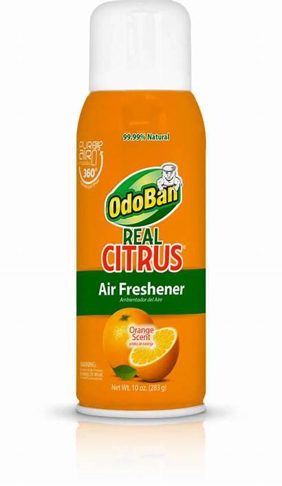 Air Citrus Freshener Odoban Spray Orange Fresheners