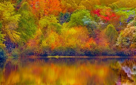 Fall Backgrounds For Desktop by Fall Backgrounds Wallpaper Gallery