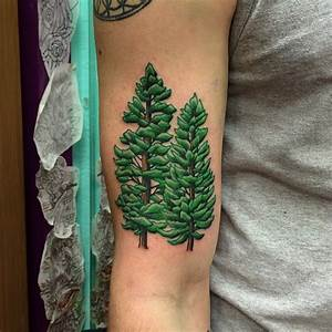 Pine Tree Tattoos Designs, Ideas and Meaning | Tattoos For You