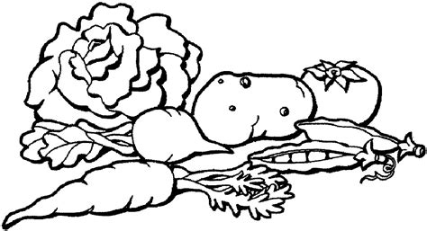 Vegetables Line Drawing