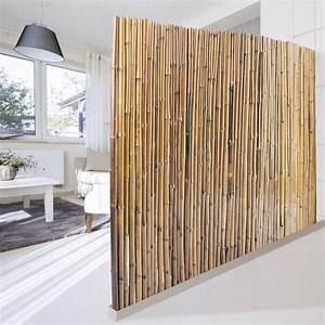 Bambus Edelstahl Sichtschutz : bambus sichtschutz natur 3 gr en phyllostachys glauca ~ Markanthonyermac.com Haus und Dekorationen