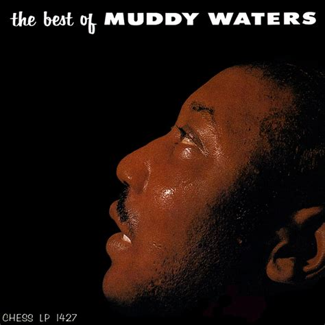 The Best Of Muddy Waters The Best Of Muddy Waters Speakers Corner The High