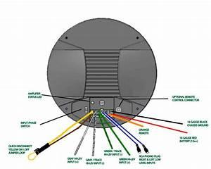 Rca Plug To Speaker Wire Diagram
