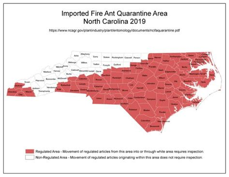 Red Imported Fire Ant In North Carolina