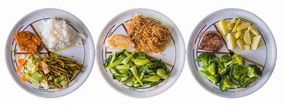 Plate Meals Weight Portion Right Control Simple