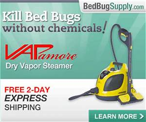 How to kill bed bugs using steam faqs for Dry cleaning kill bed bugs