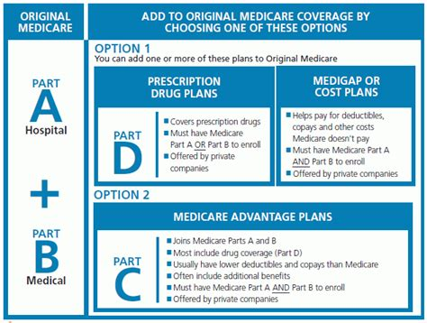 learn  medicare  filling gaps  coverage daily quotes  love