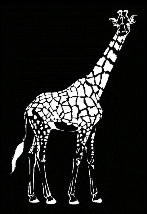 female giraffe  autocad  cad   kb