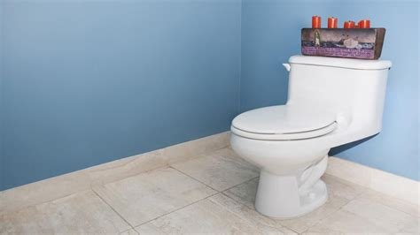 comfort height toilet vs chair height donu0027t blame the