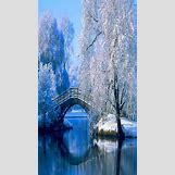 Snowflake Backgrounds For Desktop   720 x 1280 jpeg 808kB