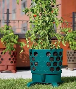 Gardener, U0026, 39, S, Revolution
