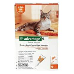 advantage flea for cats advantage flea for cats ebay