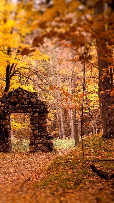 Fall Backgrounds For by 69 Best Fall Screen Saver Images On Autumn