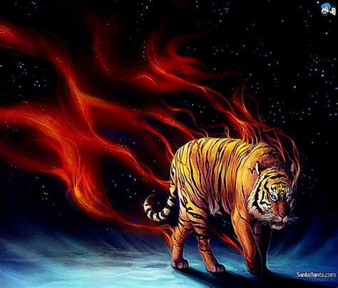 Digital Tiger Wallpaper by Abstract Digital Abstract Tiger Wallpapers Hd