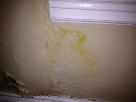 plaster wall damage  window doityourselfcom