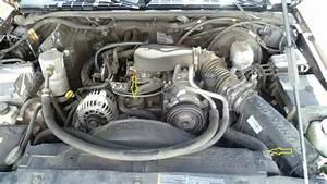 1988 Chevrolet Wiring Diagram 1994 Chevrolet Wiring